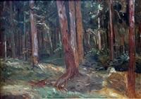 leśne ostępy by wincenty wodzinowski