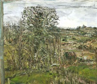 fields winter by nick miller