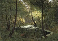 rehgeiss am waldteich by max hoenow