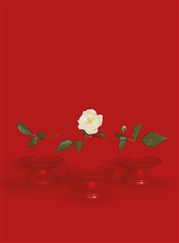 red bowls by sarah charlesworth