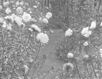 flowers in a garden by william b. post