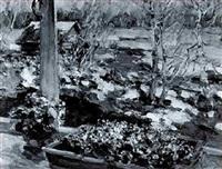 flußlandschaft mit schneestern und frühlingsboten by viatcheslav nabatov