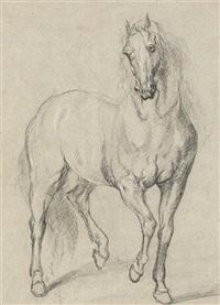 a horse by a. van dyck