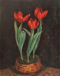 tulips by hrandt avachian