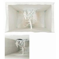 notice-forest by yuken teruya