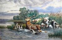 le bas l'eau de cerf by jules bertrand gélibert