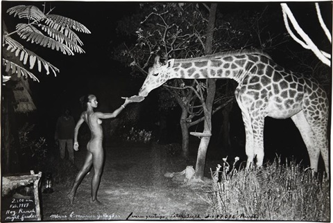 maureen gallagher and a late night feeder hog ranch by peter beard