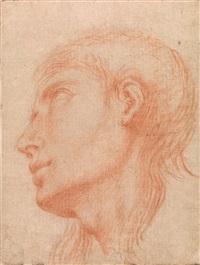 kopf eines jungen mannes im profil nach links by francesco albani