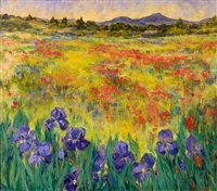 field with poppies and iris/ 1st of may at chortiati by clio natsi