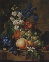 still life of grapes, peaches, walnuts, irises and other flowers on a stone ledge by johannes christianus roedig