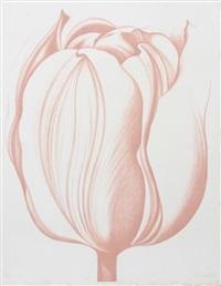 peach tulip by lowell blair newsbitt