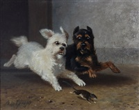 twee spelende hondjes by bernard de gempt