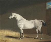 cheval blanc dans une étable by george jackson