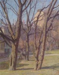 träd i vårsol by herman lindqvist