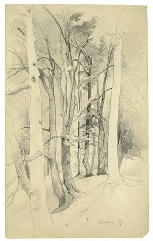 trees near diessen from sketchbook by carl maria nicolaus hummel