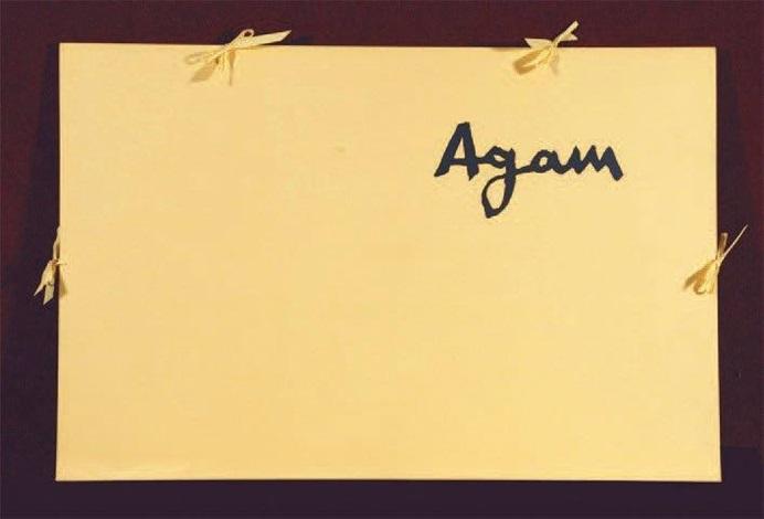 espace agam 10 works by yaacov agam
