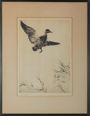 springing teal by frank weston benson