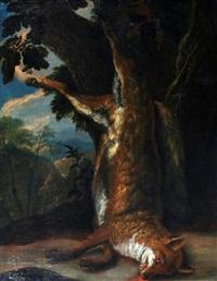 een dode vos by dirk valkenburg