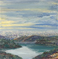 view of the hollywood reservoir by larry cohen
