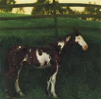 skewbald by jamie wyeth