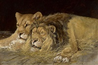 lions at rest by olaf c. seltzer