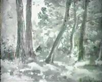 paisaje de mallorca by ricardo ankermann y riera