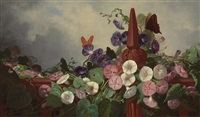morning glories and butterflies by frederick s. batcheller
