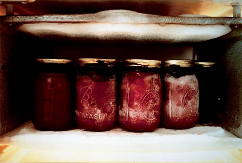 frozen jars by kiki smith