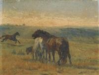 cavalli nella campagna by giuseppe raggio