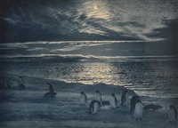 midnight in the antarctic summer, scott antarctic expedition by herbert george ponting