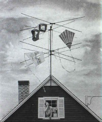 magazine cover: kites caught in a tv antenna by robert hilbert