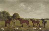 feeding the horses by clifton tomson