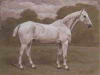 a grey horse in a wooded landscape by frank paton
