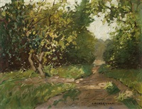 sunlit path through a bank by otto ackermann