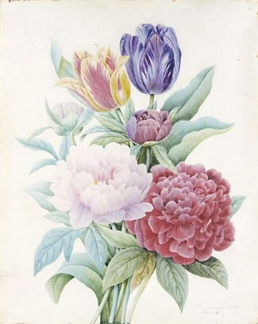 a bouquet of peonies and tulips by comtesse d aubigny dafoy
