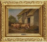 moutons rentrant à la bergerie by martinez