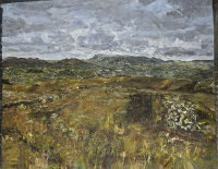 carran hill, to sligo (high bog) by nick miller