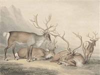 a herd of reindeer in a mountainous landscape by william samuel howitt