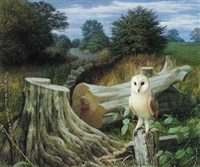 barn owl at dawn, eccup by raymond booth