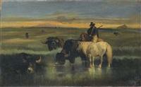 bufali all'abbeverata by giuseppe raggio