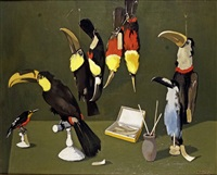 les toucans by robert humblot