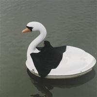 swan rider by parastou forouhar
