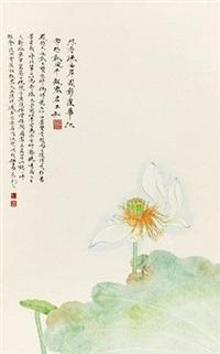 玉菡萏 by ren zhong