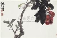 荔枝翠鸟 by xu chunyuan