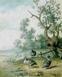 three ducks by their nesting-basket, on a river bank by margarethe de heer