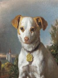 ein hund aus jägerndorf by ferdinand krumholz