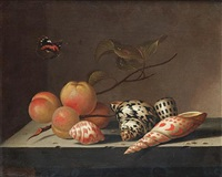 peaches and shells on a stone ledge with a red admiral butterfly by bartholomeus assteyn