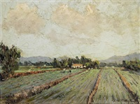 vegetable farm, cape flats by george william pilkington