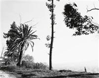 edge of san timoteo canyon, san bernardino county, california by robert adams
