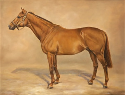 grand lodge at coolmore stud by sarah aspinall